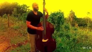 Bass Groove - William Cruz Ruiz (Short Video)  )