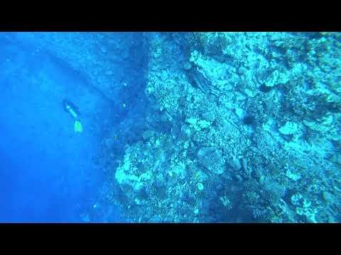 Scuba Dive in 171106 @Hawaii w/ ProDiver Maui (Molokini) - 5