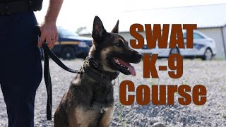 Swat K9 Integration Course