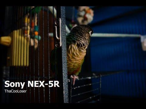 SONY NEX-5R - Day and Night Test video