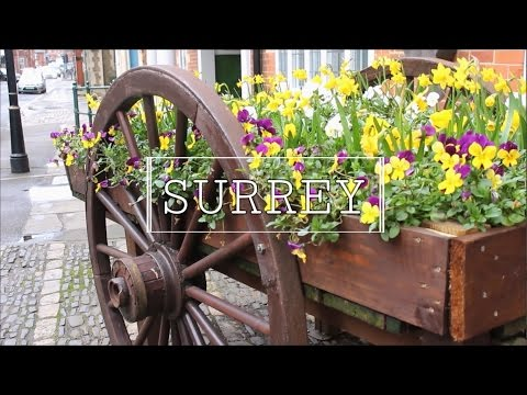 a travel journal: surrey