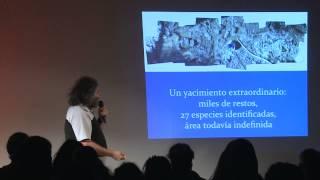 Sexta extinción / Sixth Extinction | Richard Fariña | TEDxCaboPolonio