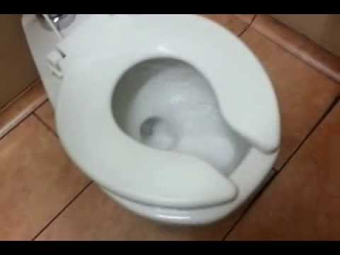 flushing a disposable diaper down a child sized toilet