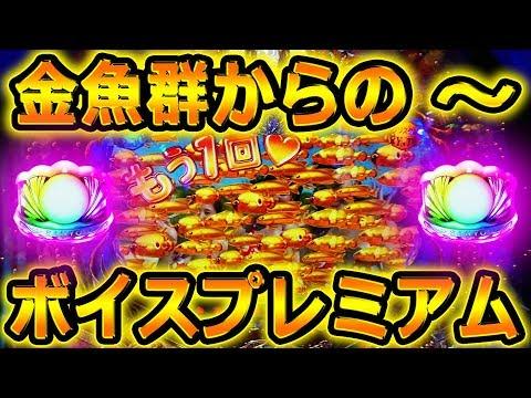 『CR大海物語4 ⑩』金魚群からの~ボイスプレミアム「どっか~ん!大海物語4!」