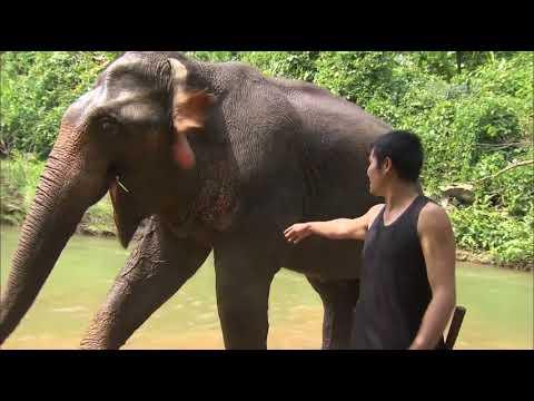 Лаос - Самые