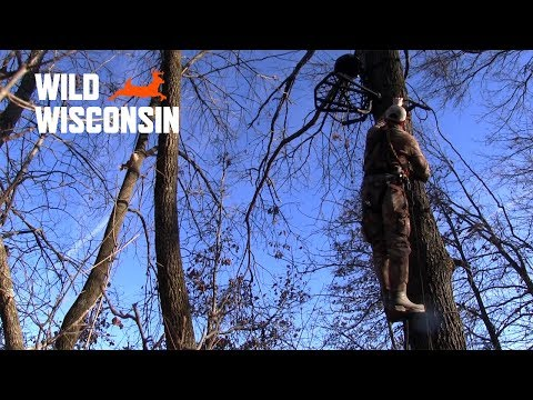 Firearm And Treestand Safety - Wild Wisconsin 2018 Bonus Segment