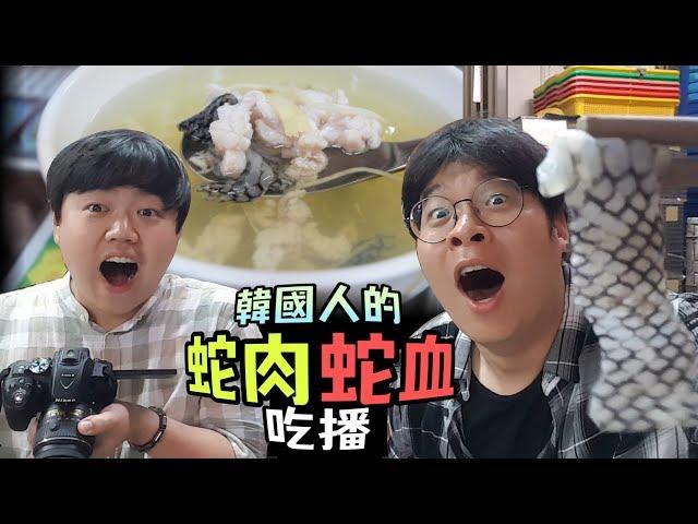 韓國人的台灣蛇肉和蛇血吃播, 台中中華路夜市特食體驗 第二彈 by 韓國歐巴, 胖東. Wire-Head
