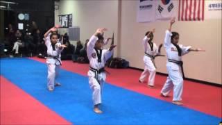 BlackTiger Martial Art School - TKD Hand Techniques & Taeguk Dance