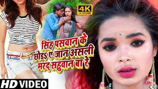 #Hot_Video_song-असली मर्द सहुवान बरेंन/Asali Marad sahuwan baren/ Amrendra Albela का जरुर देखें