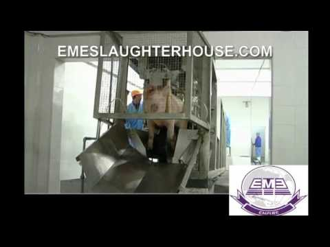 The Newest pig abattoir slaughter line Unit I By EME butchery equipment factory supplier
