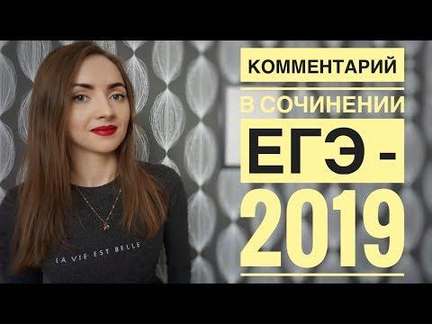 КОММЕНТАРИЙ В СОЧИНЕНИИ ЕГЭ - 2019 [IrishU]