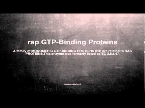 Medical vocabulary: What does rap GTP-Binding Proteins mean