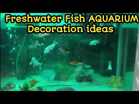 AQUARIUM Decoration ideas || Fish AQUARIUM Decoration ideas  setup | koi fish tank | Gold fish mates