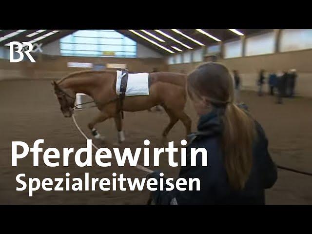 Pferdewirtin Spezialreitweisen   Ich mach's   Ausbildung   Beruf   BR