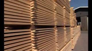 Holz Ruser - wertvolle Rohstoffe, natürlich nutzen