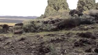 Pali Aike : volcans et indiens de Patagonie.