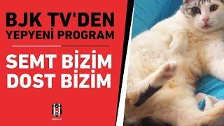 "BJK TV'den yepyeni program ""Semt Bizim Dost Bizim"""