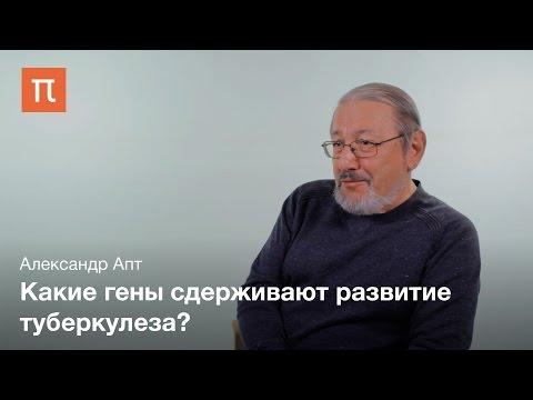 Диагностика и лечение туберкулеза Александр Апт