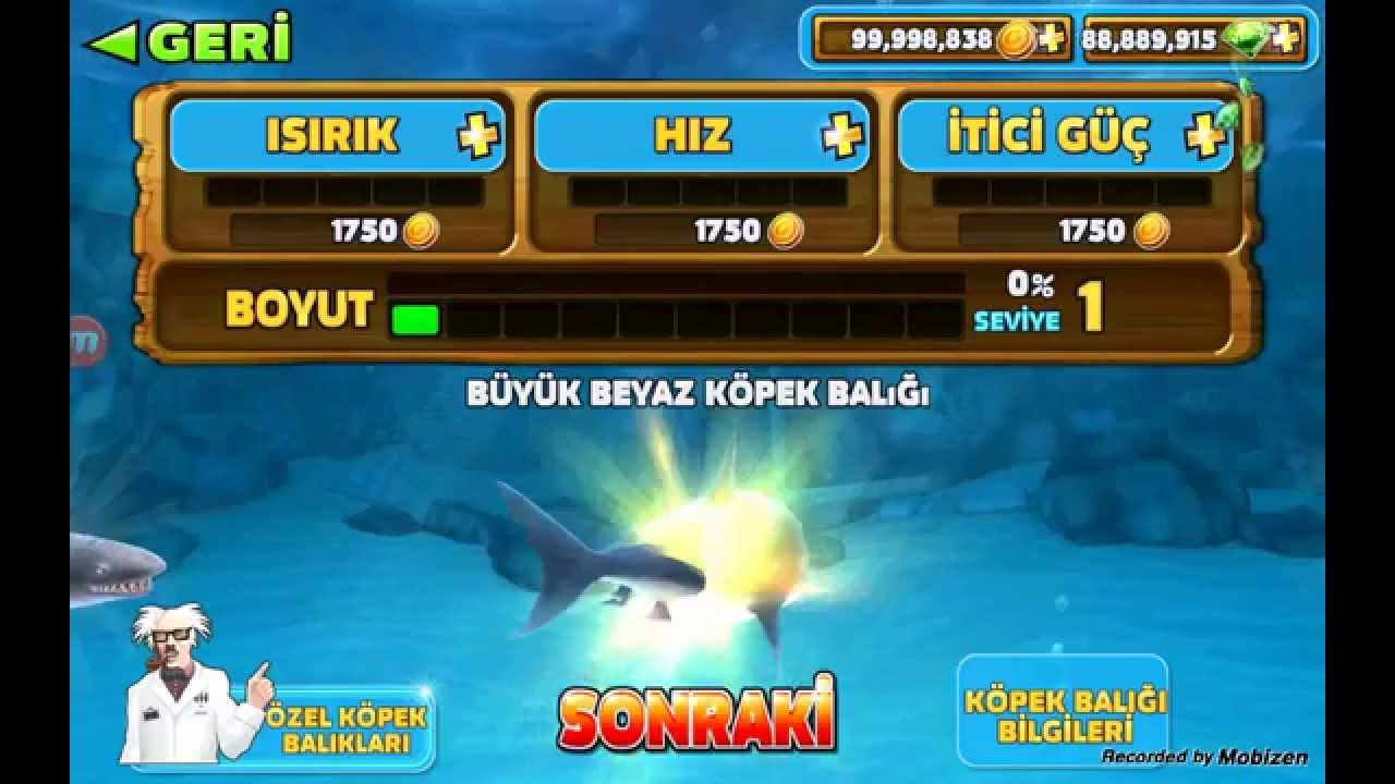 Hungry Shark Evolution Para Hilesi - YouTube