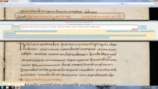 Transcribing Texts for the Carolingian Canon Law Project using T-PEN