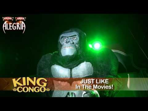 KONGO MAY 30