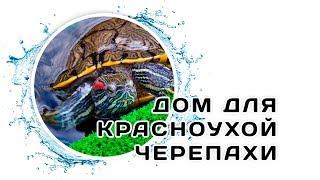 Оформляем акватеррариум для Красноухой черепахи