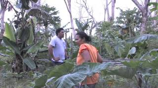 THE PACIFIC WAY STORY - MORDI Tonga. Innovative Rural Development