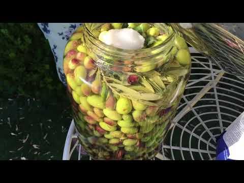 Nonna Franca Preserving Green Olives