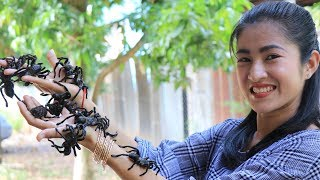 Deep fried tarantula in Cambodia  Cooking Spider recipe cooking by countryside life TV.