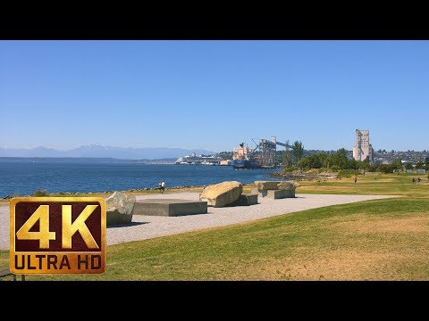4K Cityscapes - Myrtle Edwards Park, Seattle - Trailer