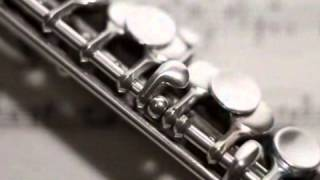 Musical Instrument Tuning & Repair - Martin Cardy Woodwind & Brass Instrument Repairs
