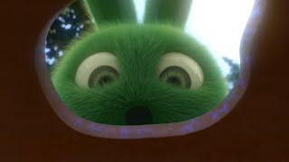 Sunny Bunnies | ✏️ Magic Eraser ✏️ | SUNNY BUNNIES COMPILATION | Videos For Kids