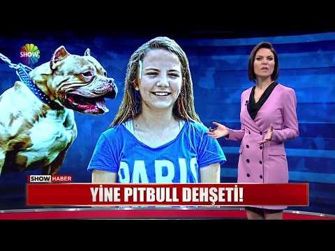Show Ana Haber 6 Haziran 2018