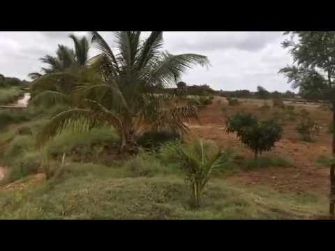 Bhumika Farms - Organic Farm close to Bangalore