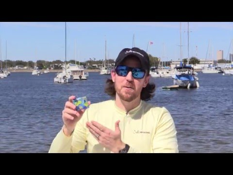 Is A Lifetime Florida Fishing License Worth The Money? Here Are The Numbers.