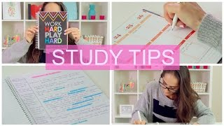 Climb your way to an A! | STUDY TIPS + DIY Organization |