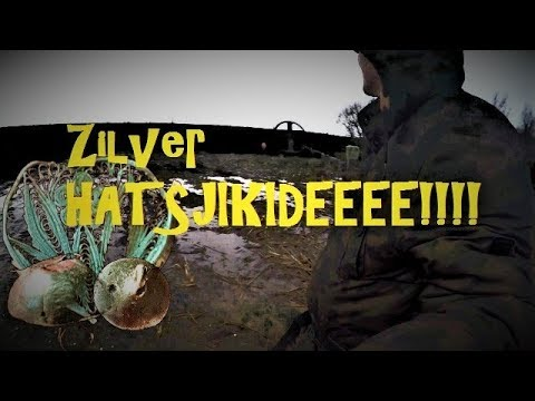 Hunting Coins zilver Hatsjikidee!!!!