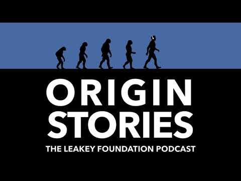 Episode 50: Understanding Neanderthals