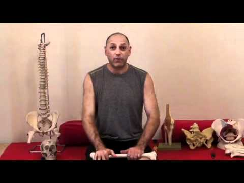 Yoga Anatomy Course Online, by Leslie Kaminoff - YouTube