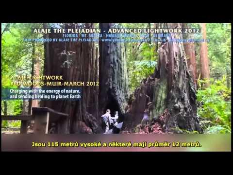 Part 20 - Pleiadian Alaje - ADVANCED LIGHTWORK - Czech Sub