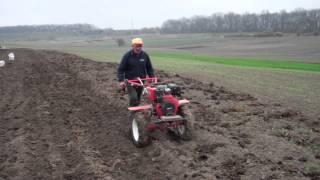 Мотоблок FORTE - посадка картошки(Вчера ездил к теще сажать картошку, в этом году тесть решил не нанимать трактор, а посадить картофель при..., 2014-04-13T10:10:19.000Z)