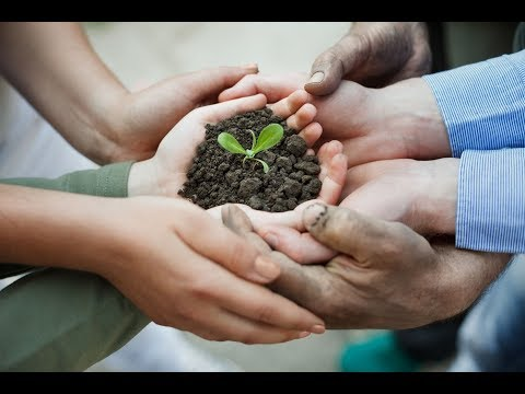 Sustainability: Why Customers Care