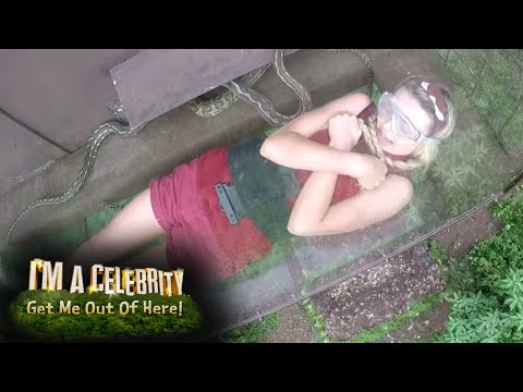 FIRST LOOK: Toff Takes on Snakes R High | I'm A Celebrity...Get Me Out Of Here!