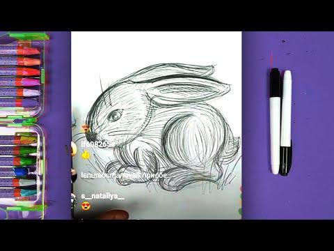 Рисунки карандашом для детей видео урок