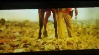 Power Star Pawan Kalyan Fans Response For Shakalaka Shankar Entry In Jatha Kalise Movie