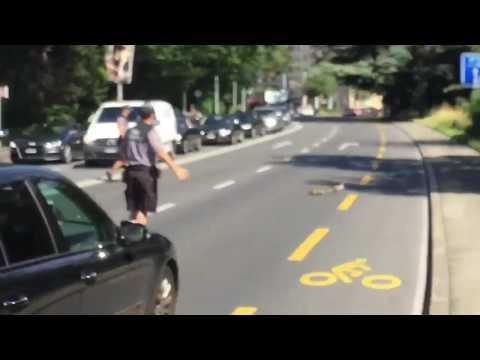La police de Genève fait traverser des canards