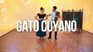 Gato cuyano (San Luis) - BAILEMOS