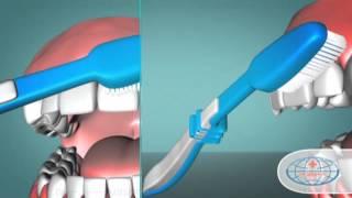 Гигиена полости рта(, 2012-08-22T12:04:03.000Z)