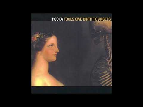 Pooka - Music is the Light
