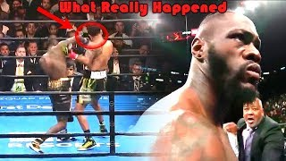 What Really Happened (Deontay Wilder vs Dominic Breazeale)
